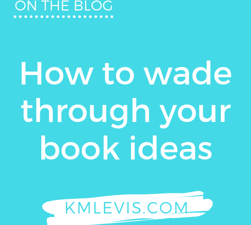 How to wade through your book ideas